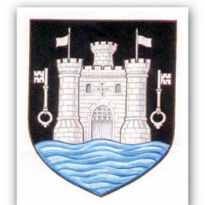 programmes - Totnes Town Council Meeting